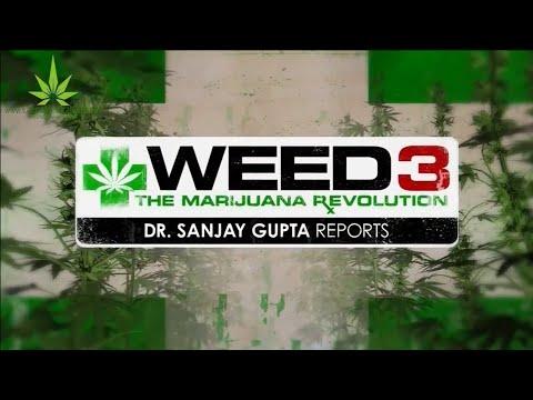 """CNN WEED 3 """"The Marijuana Revolution"""" Dr Sanjay Gupta MD part 3 of 3"""