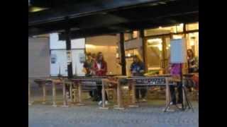 Шведские подростки в Лунде