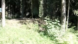 Святой колодец.(Побывали с детьми в лесу,на святом колодце.Красота.Instagram:http://instagram.com/sergon78. В контакте: http://vk.com/id15376100. Одноклас..., 2013-08-08T15:37:02.000Z)