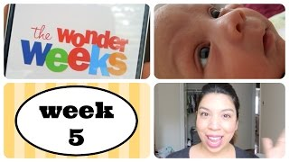 5 WEEK OLD FUSSY BABY ~THE WONDER WEEKS-LEAP 1~