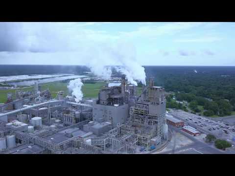 Paper Mill, South Carolina