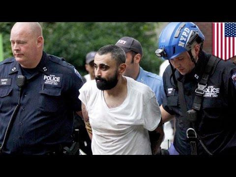 Pria gila masuk & bersantai di kandang burung, ditangkap NYPD - Tomonews