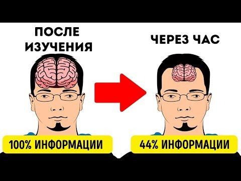 Как быстро запомнить правила по русскому языку