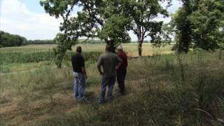 Indiana Family Farm - America's Heartland