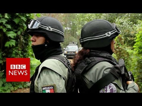 On patrol with Mexico's avocado police - BBC News