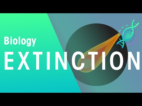 Extinction of Species | Biology for All | FuseSchool