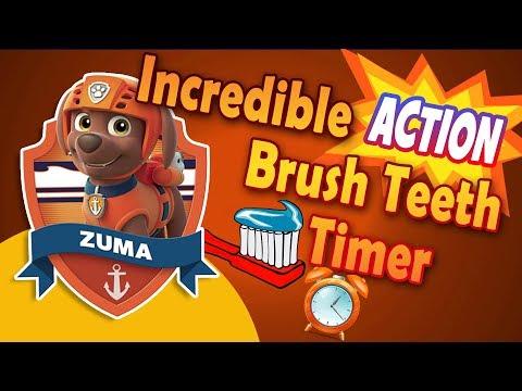 Incredible Action Timer Paw Patrol  - Zuma