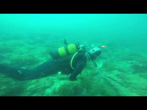 Diving in Portugal - Dive 1