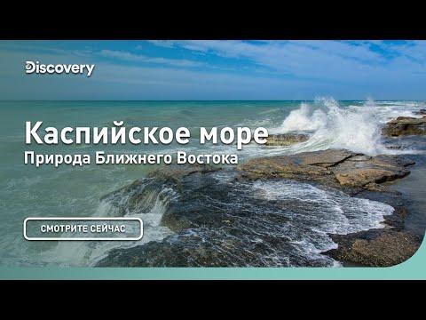 Каспийское море |