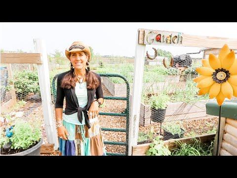 FARM HOUSE Garden Tour ~ Couple Grows Food In Boxes!