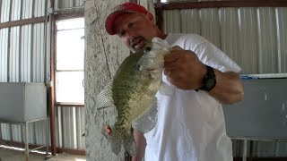 crappie fishing tips for shallow docks