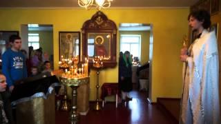 отец Николай Зинин. вход Господень во Иерусалим