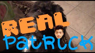[Real Patrick] More Singing, Story Time, & Luhan (the dog)