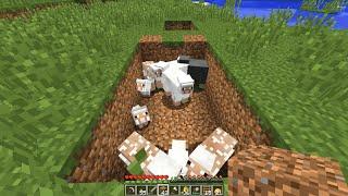 Minecraft cu avg - S3 E6 - sursa stabila de lana
