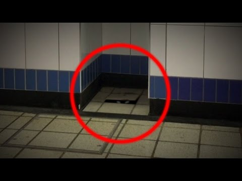 Mysterious creature in walthamstow underground station