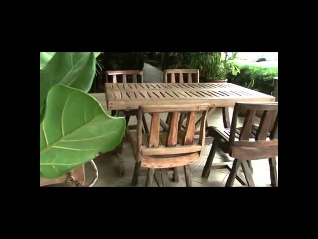Oil Palm Tree: An Introduction to Palm Wood and Palm Wood Furniture