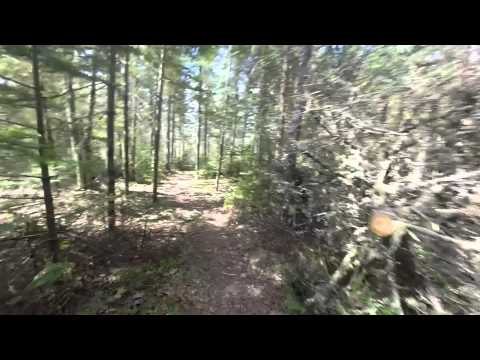 Mountain Biking; 5-16-14 Bangor Forest