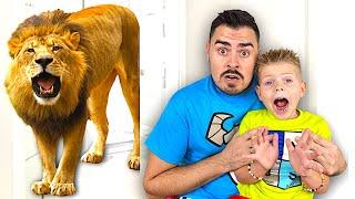 Платоха Моха и папа устроили домашний зоопарк - сборник видео для детей