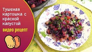 Тушеная картошка с краснокочанной капустой — видео рецепт постного обеда или ужина