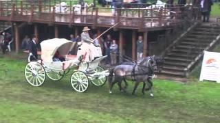 ARON POWOZY - Konie i Powozy Rokosowo 10.06.2012 cd. 8