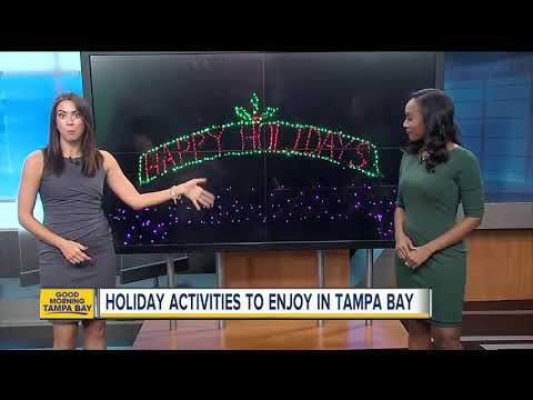 Holiday activities to enjoy in Tampa Bay