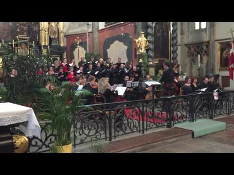 Classical music performance at the The Church of Our Lady before Týn