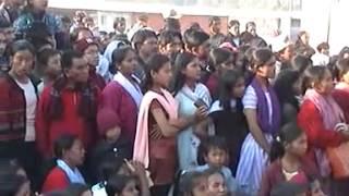 Documentaries of chitwan nepal