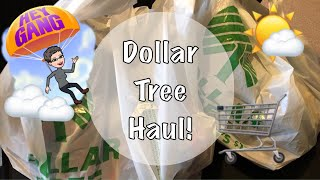 Dollar Tree Haul! | New Finds | October 2018