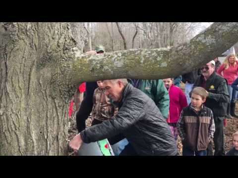 On the Scene: Governor taps tree in Vermont