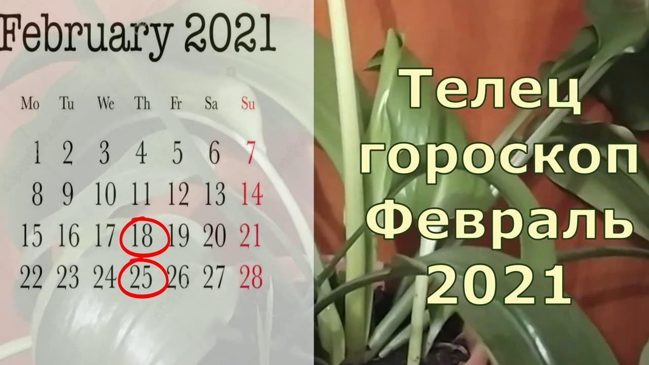Телец гороскоп на февраль 2021