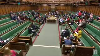 British Parliament on Crisis in Cameroon