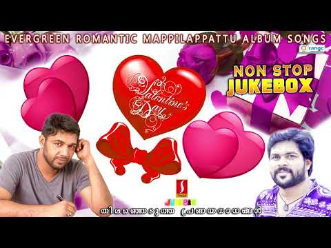 Valentine's day Special Jukebox | Saleem|Shafi |Selected Romantic Mappilapattu album 2018