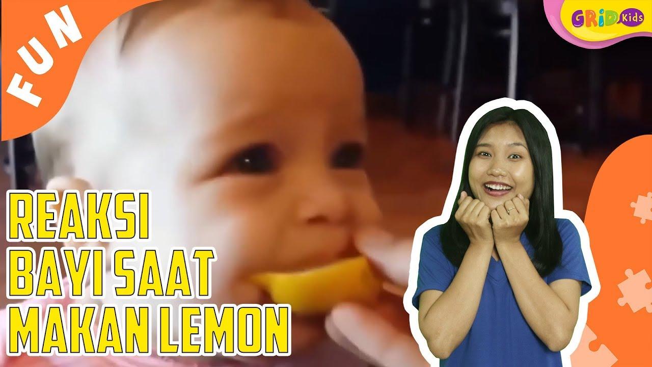 Bikin Gemas Lucunya Ekspresi Bayi Bayi Ini Mencicipi Lemon