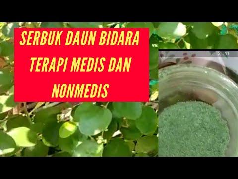 cara-membuat-serbuk-daun-bidara-dan-manfaatnya-(-obat-luka,-asam-lambung,-maag,-jerawat,nonmedis)