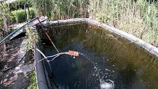 Пруд для рыб на своём участке