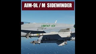 DCS: F/A-18C Hornet AIM-9L/M Sidewinder Air-to-Air Missile Training Lesson Recording