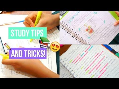 Study Tips! | Cara Belajar yang Seru! 🤓| (Bahasa Indonesia)