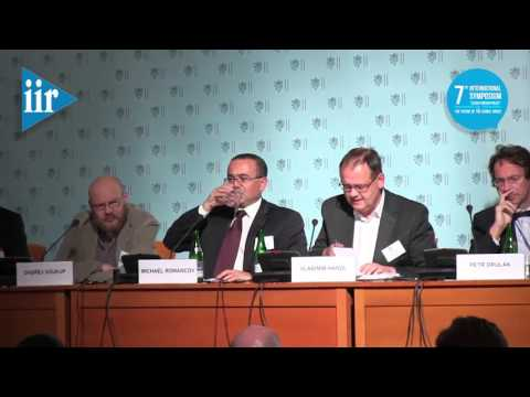 """7th International Symposium """"Czech Foreign Policy"""": Thursday, Panel III"""
