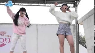 平成27年4月18日(土) 霧島ファクトリーガーデンで行われた、宮崎のアイ...