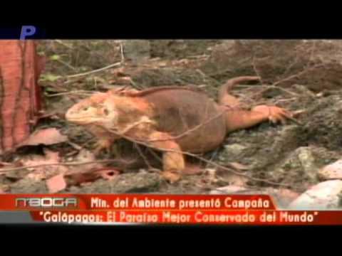 Ministerio del Ambiente presentó campaña Galápagos El Paraíso Mejor Conservado del Mundo