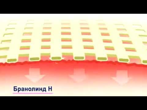 Рекламный ролик Бранолинд Н