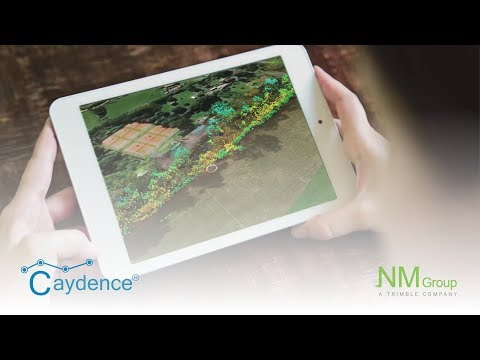 NM Group Caydence - 3D visualisations of the powerline environment using LiDAR data