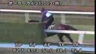 [調教] 08/05/07 ポーラーライツ 「京都新聞杯」前追い切り