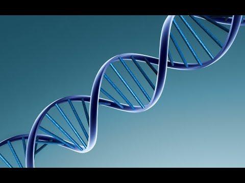 Michio Kaku - DNA & Human Origins