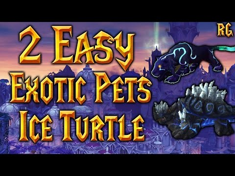 How To Tame Ice Turtle and Spirit Beast Cat! Hunter's Guide - Patch 7.2
