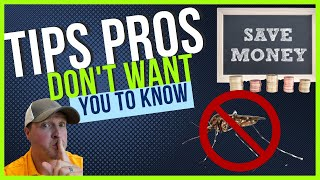 How to kill mosquitoes LIKE A PRO    Get rid of MOSQUITOES around your lawn