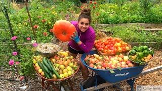 Massive Late Summer Gaŗden Harvest and Seed Saving!