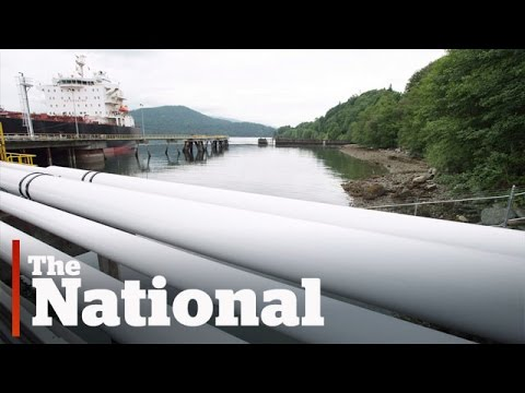 Line 3 and Kinder Morgan pipelines approved