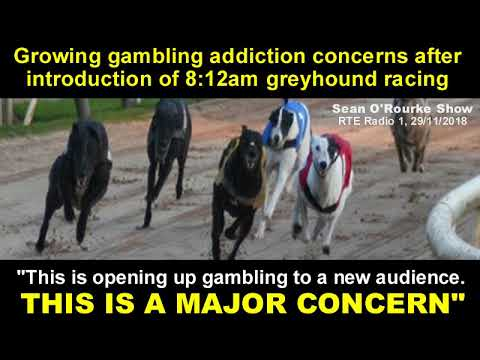 growing-gambling-addiction-concerns-after-introduction-of-8:12am-greyhound-racing