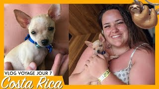 COSTA RICA JOUR 7 : LE CHIEN LE PLUS CUTE EVER | 99VLOGS